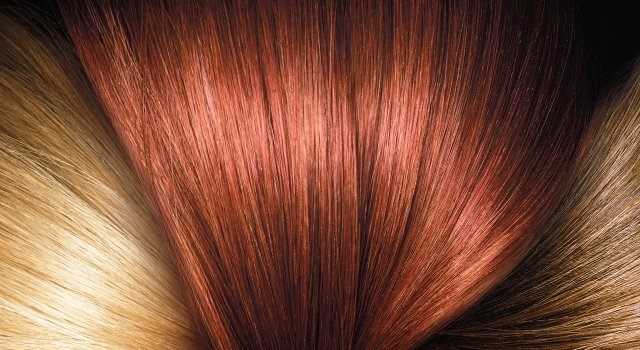The use of permanent hair dye has no relevance to many types of cancer or cancer deaths